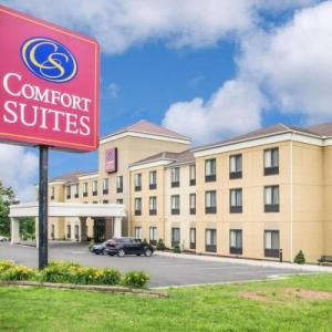Comfort Suites Vestal near University Vestal
